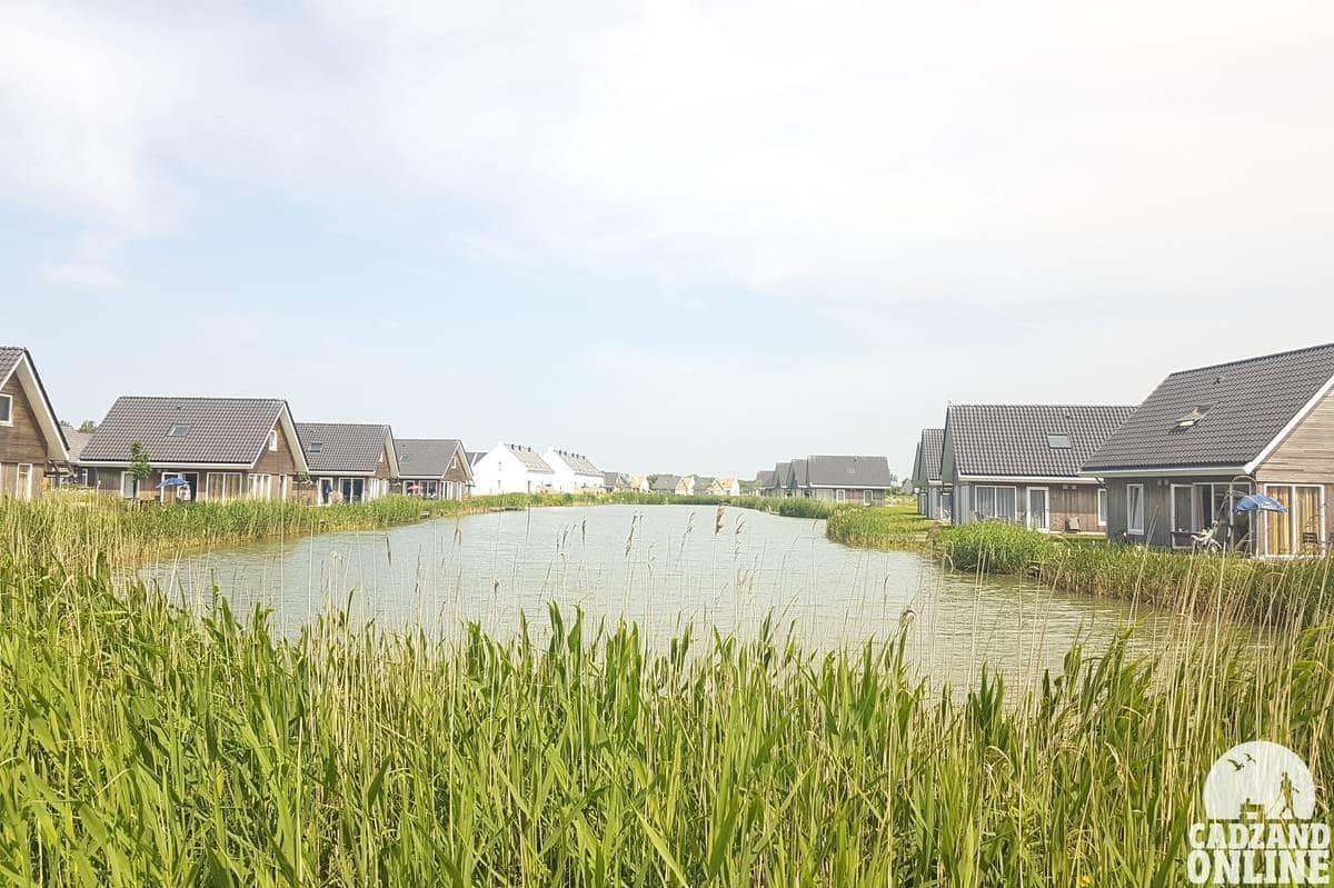Vakantie-aan-zee-Nieuwvliet