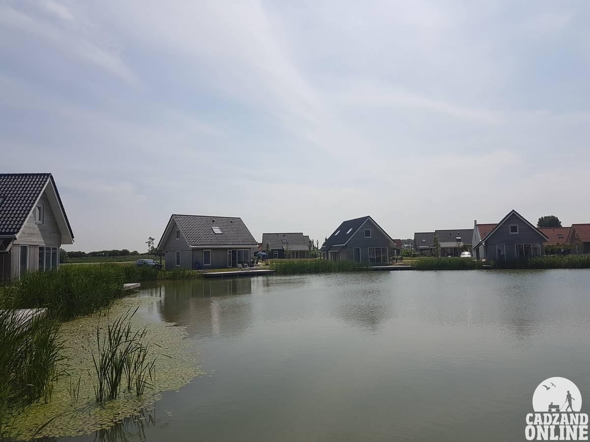 Vijver-vakantiehuis-Nieuwvliet