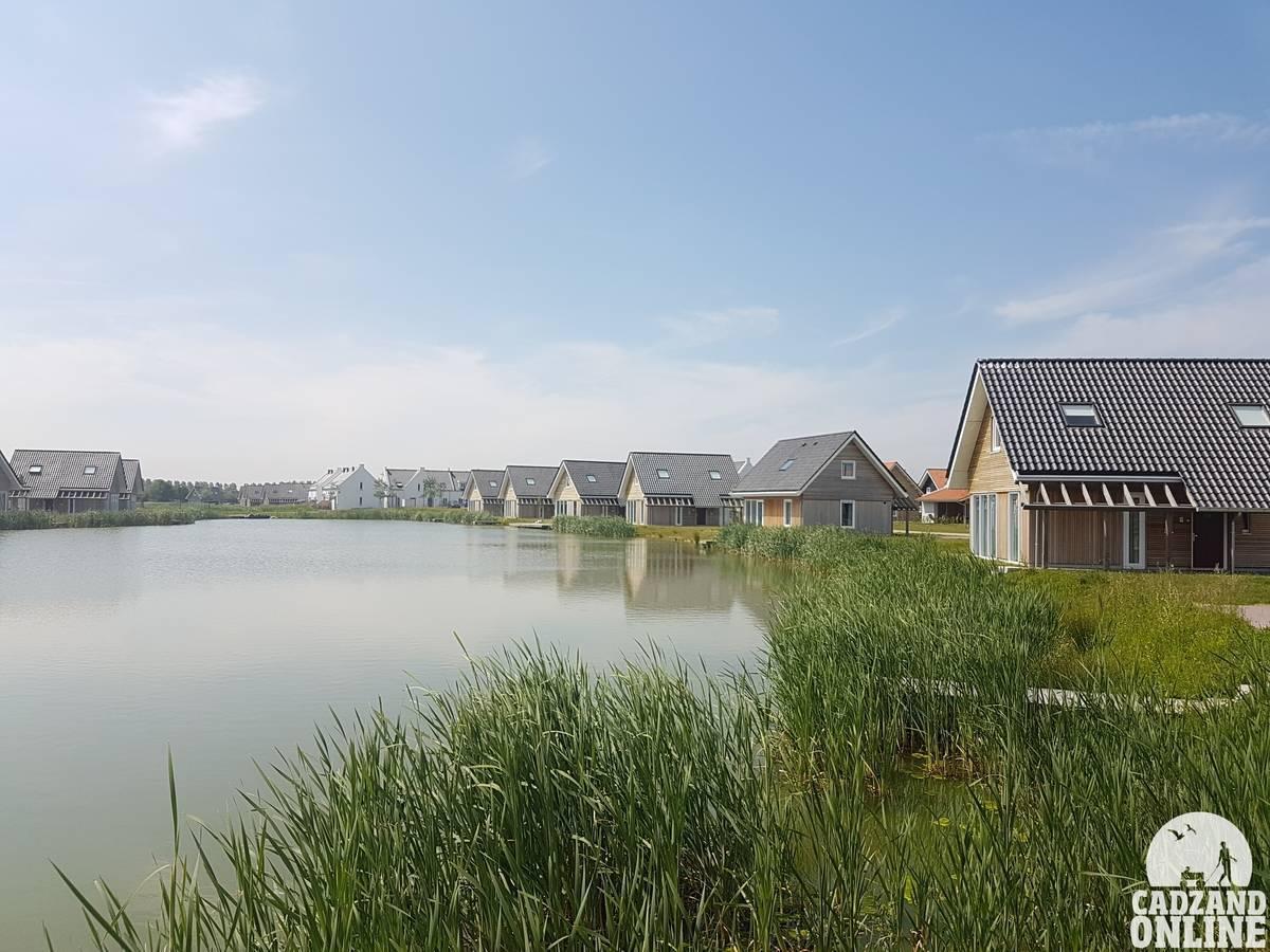 Vijver-vakantiehuizen-Nieuwvliet