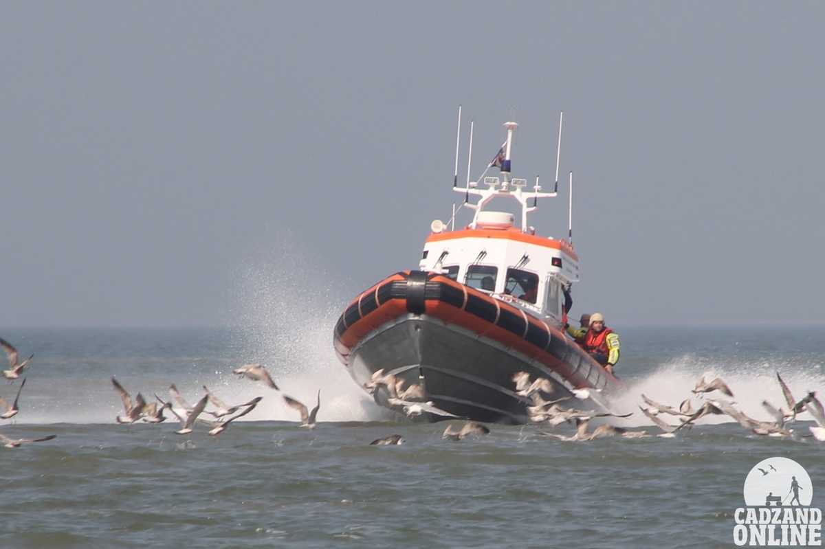 Meeuwen-en-reddingboot-aan-elkaar-gewend