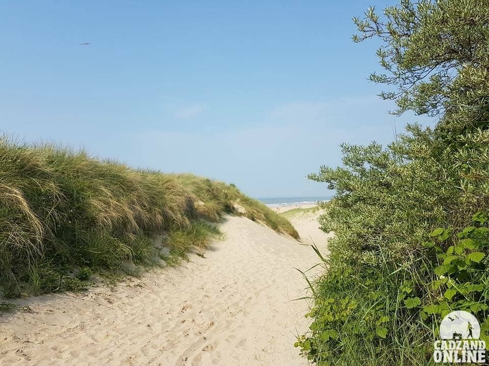 Duinen-Cadzand-Bad