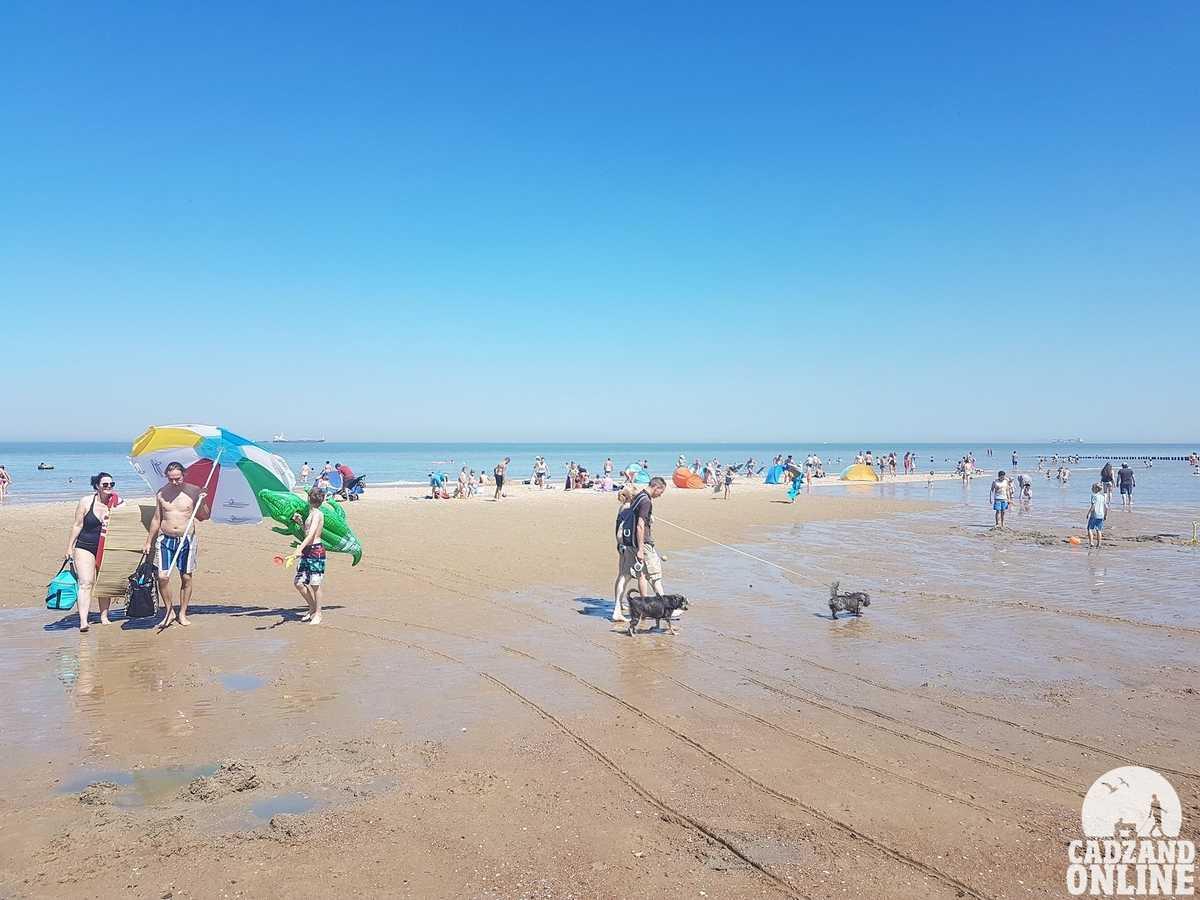 Strand-Cadzand-Bad-zomer-2