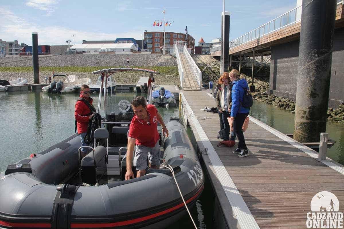 De-zeehondjes-boot